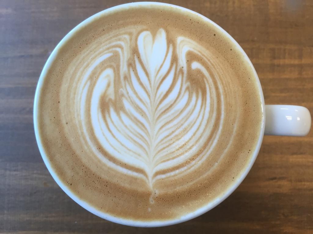 会社の趣味のサークル活動や部活でコーヒーのセミナーをやってみませんか?